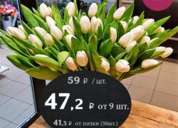 Тюльпан классик (Голландия)