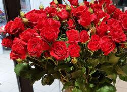 Роза кустовая 60 см (Кения)
